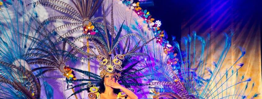 carnavalvinarospianopinao